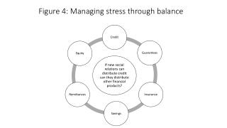 Figure 4:  Managing stress  through  balance