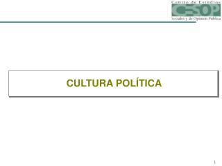 CULTURA POL TICA
