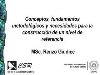 Conceptos, fundamentos metodológicos y necesidades para la construcción de un nivel de referencia