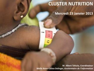 CLUSTER NUTRITION Mercredi 23 Janvier 2013 M. Albert Tshiula,  Coordinateur