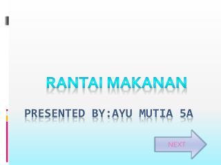 Presented by:ayu mutia 5a