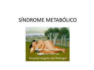 S�NDROME METAB�LICO