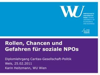 Rollen, Chancen und Gefahren für soziale NPOs