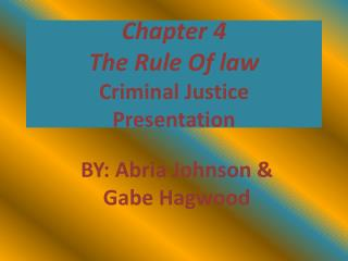 Chapter 4 The Rule Of law Criminal Justice  Presentation