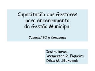 Instrutores:  Wemerson R. Figueira Dilce M. Stakoviak