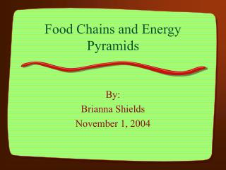 Food Chains and Energy Pyramids