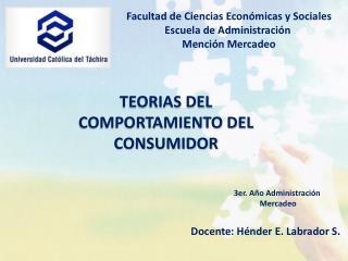 TEORIAS DEL COMPORTAMIENTO DEL CONSUMIDOR