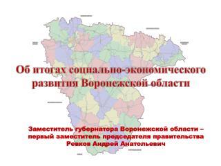 Об итогах социально-экономического развития Воронежской области