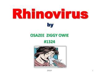 Rhinovirus by
