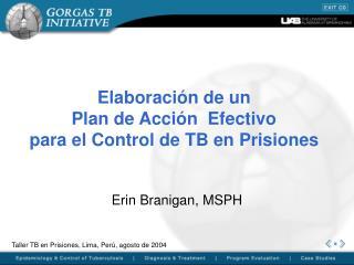 Elaboraci n de un  Plan de Acci n  Efectivo  para el Control de TB en Prisiones