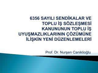 Prof. Dr. Nur?en Caniklio?lu