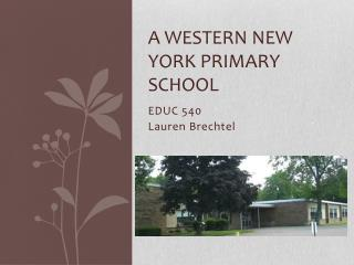 A Western New York Primary School