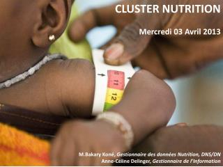 CLUSTER NUTRITION Mercredi 03 Avril 2013