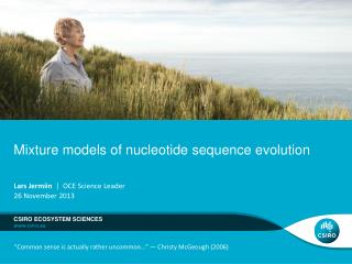 Mixture models of nucleotide sequence evolution