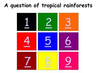 A question of tropical rainforests