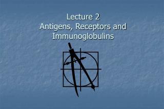 Lecture 2 Antigens, Receptors and Immunoglobulins