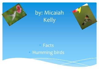 by:  Micaiah Kelly