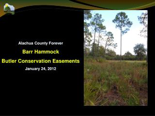 Alachua County Forever Barr Hammock Butler Conservation Easements January 24, 2012