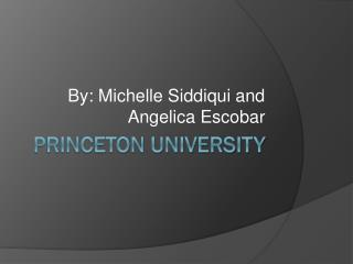 Princeton Universit y