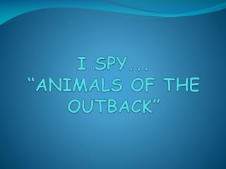 "I SPY...  ""ANIMALS OF THE OUTBACK"""