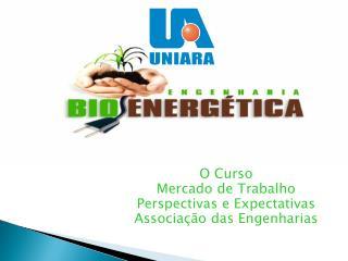 O que é Engenharia Bioenergética? O Curso Mercado de Trabalho Perspectivas e Expectativas