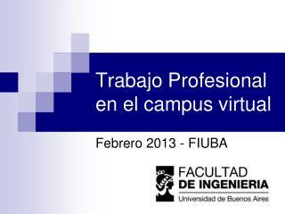 Trabajo Profesional en el campus virtual