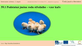 59.1 Podstatná jména rodu středního – vzor kuře