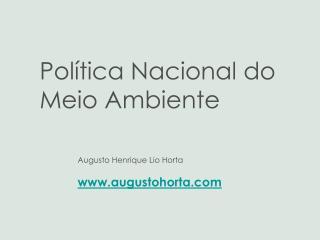 Augusto Henrique Lio Horta augustohorta