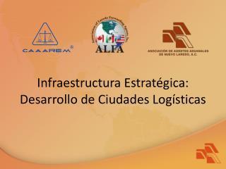 Infraestructura Estratégica: Desarrollo de Ciudades Logísticas