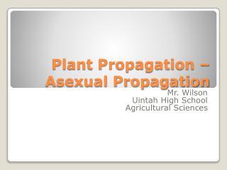 Plant Propagation – Asexual Propagation