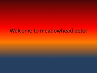 Welcome to meadowhead peter