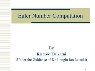 Euler Number Computation