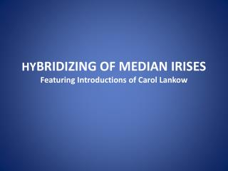 HY BRIDIZING OF MEDIAN IRISES Featuring Introductions of Carol Lankow