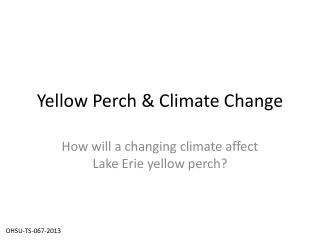 Yellow Perch & Climate Change