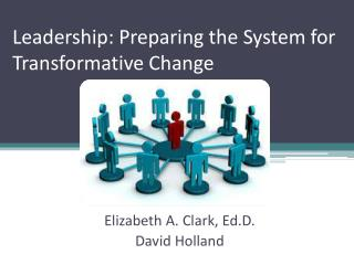 Leadership: Preparing the System for Transformative Change