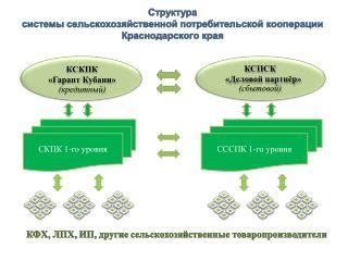 Структура  системы сельскохозяйственной потребительской кооперации Краснодарского края