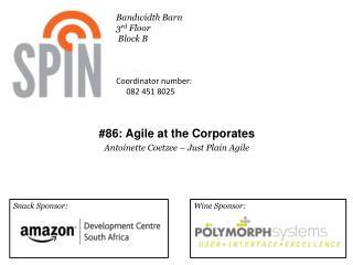 #86: Agile at the Corporates Antoinette Coetzee – Just Plain Agile