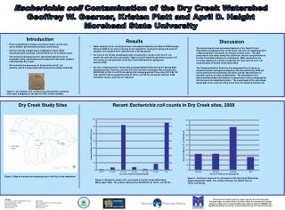 Escherichia coli  Contamination  of the Dry Creek Watershed
