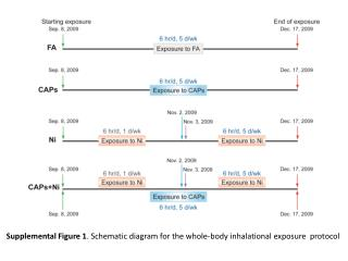 Supplemental Figure 1 . Schematic diagram for the whole-body inhalational exposure  protocol