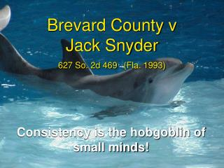 Brevard County v  Jack Snyder  627 So. 2d 469  Fla. 1993