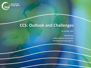 CCS: Outlook and Challenges