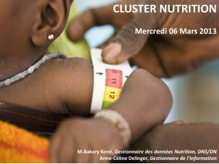CLUSTER NUTRITION Mercredi 06 Mars 2013