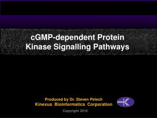 CGMP-dependent Protein Kinase Signalling Pathways