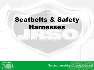 Seatbelts & Safety Harnesses