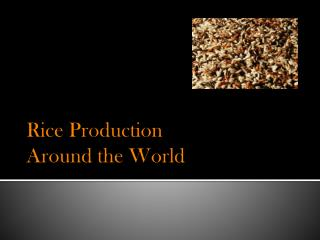 Rice Pr oduc tion  Around the World