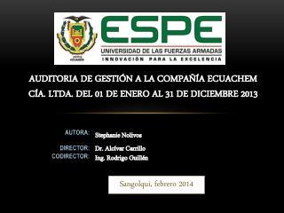 AUDITORIA DE GESTIÓN A LA COMPAÑÍA ECUACHEM CÍA. LTDA. DEL 01 DE ENERO AL 31 DE DICIEMBRE 2013