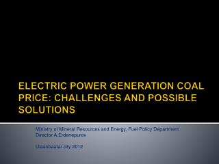 ELECTRIC POWER GENERATION COAL  PRICE :  CHALLENGES AND POSSIBLE SOLUTIONS