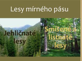 Sm�en� a listnat� lesy