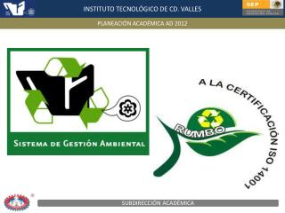 INSTITUTO TECNOLÓGICO DE CD. VALLES