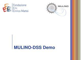 MULINO-DSS Demo